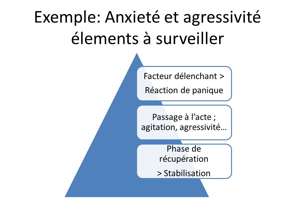 Exemple: Anxieté et agressivité élements à surveiller