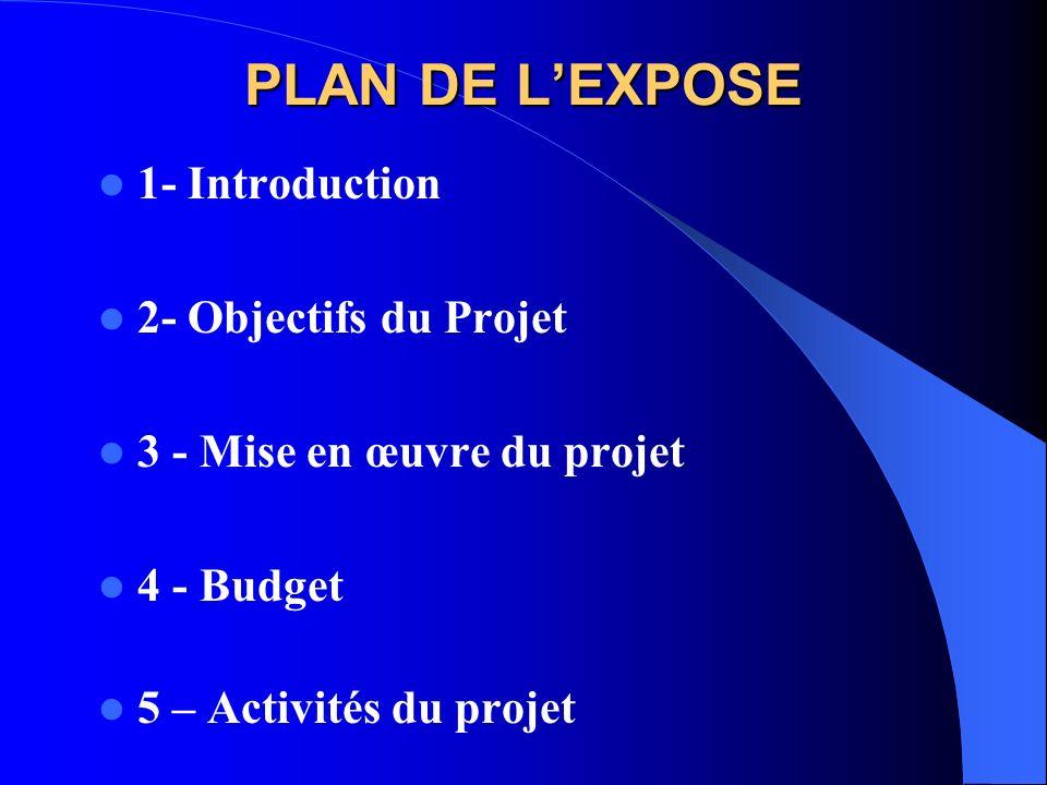 PLAN DE L'EXPOSE 1- Introduction 2- Objectifs du Projet