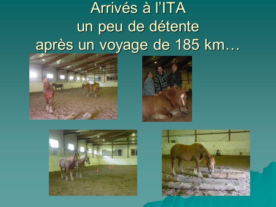 Arrivés à l'ITA un peu de détente après un voyage de 185 km…