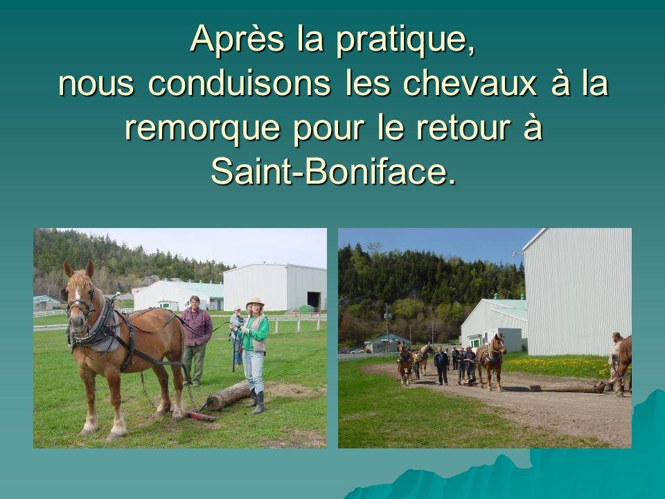 Après la pratique, nous conduisons les chevaux à la remorque pour le retour à Saint-Boniface.