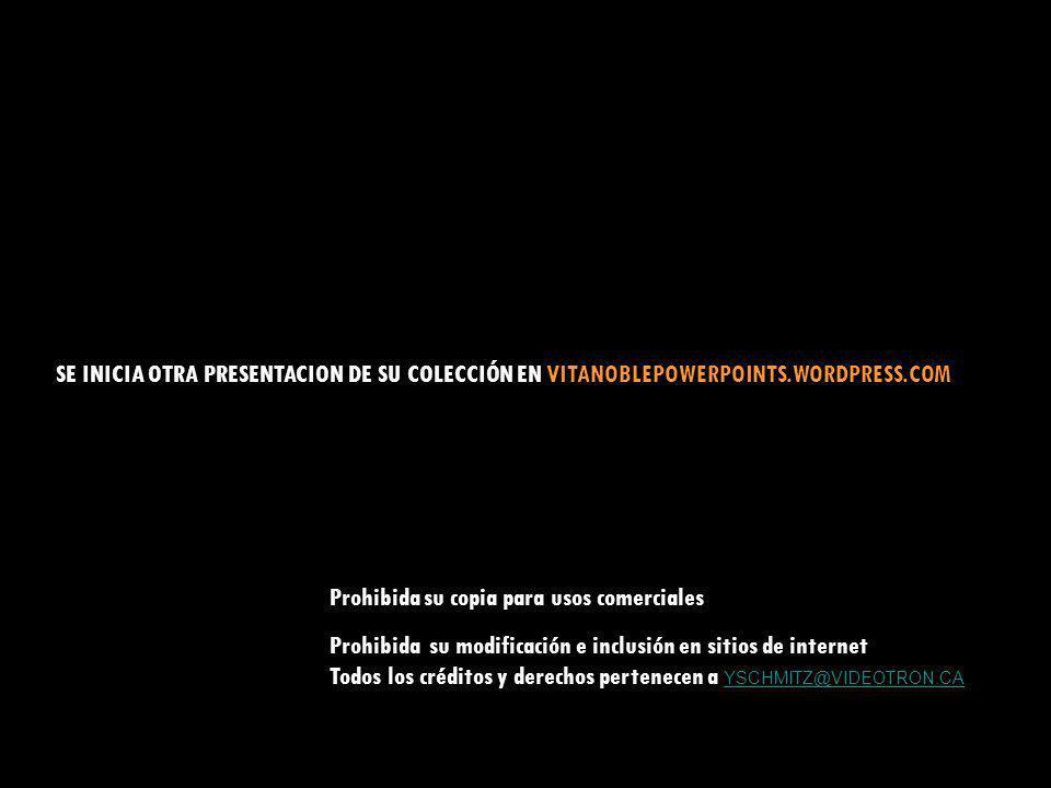 SE INICIA OTRA PRESENTACION DE SU COLECCIÓN EN VITANOBLEPOWERPOINTS
