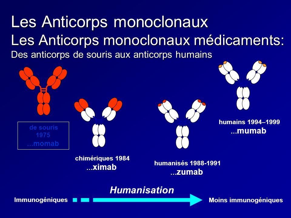 Les Anticorps monoclonaux Les Anticorps monoclonaux médicaments: Des anticorps de souris aux anticorps humains