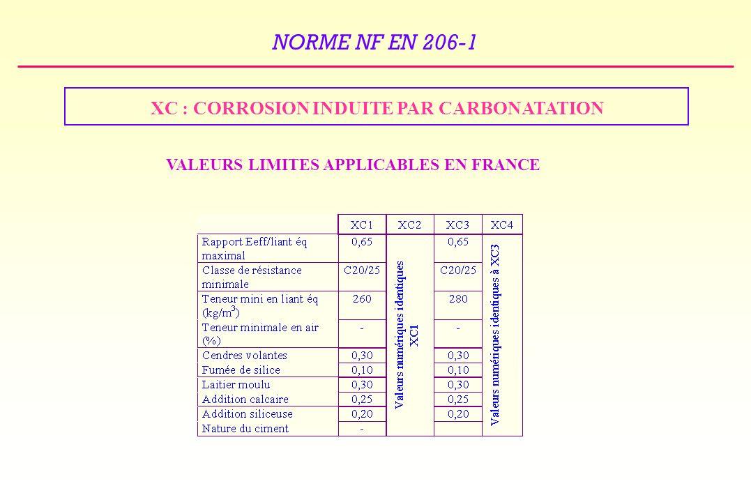 XC : CORROSION INDUITE PAR CARBONATATION