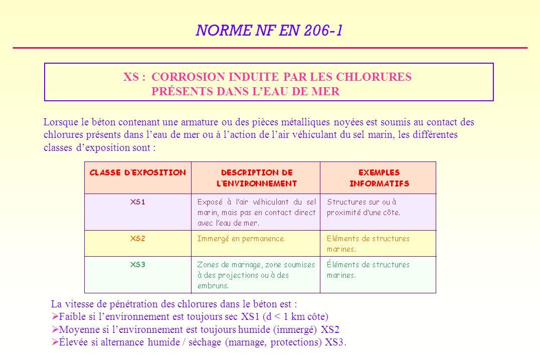 XS : CORROSION INDUITE PAR LES CHLORURES PRÉSENTS DANS L'EAU DE MER