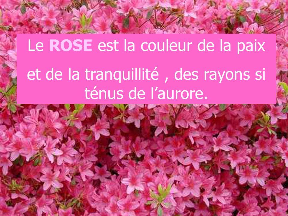 Le ROSE est la couleur de la paix