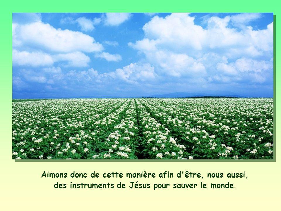 Aimons donc de cette manière afin d être, nous aussi, des instruments de Jésus pour sauver le monde.