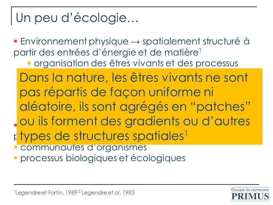Un peu d'écologie… Environnement physique → spatialement structuré à partir des entrées d'énergie et de matière1.