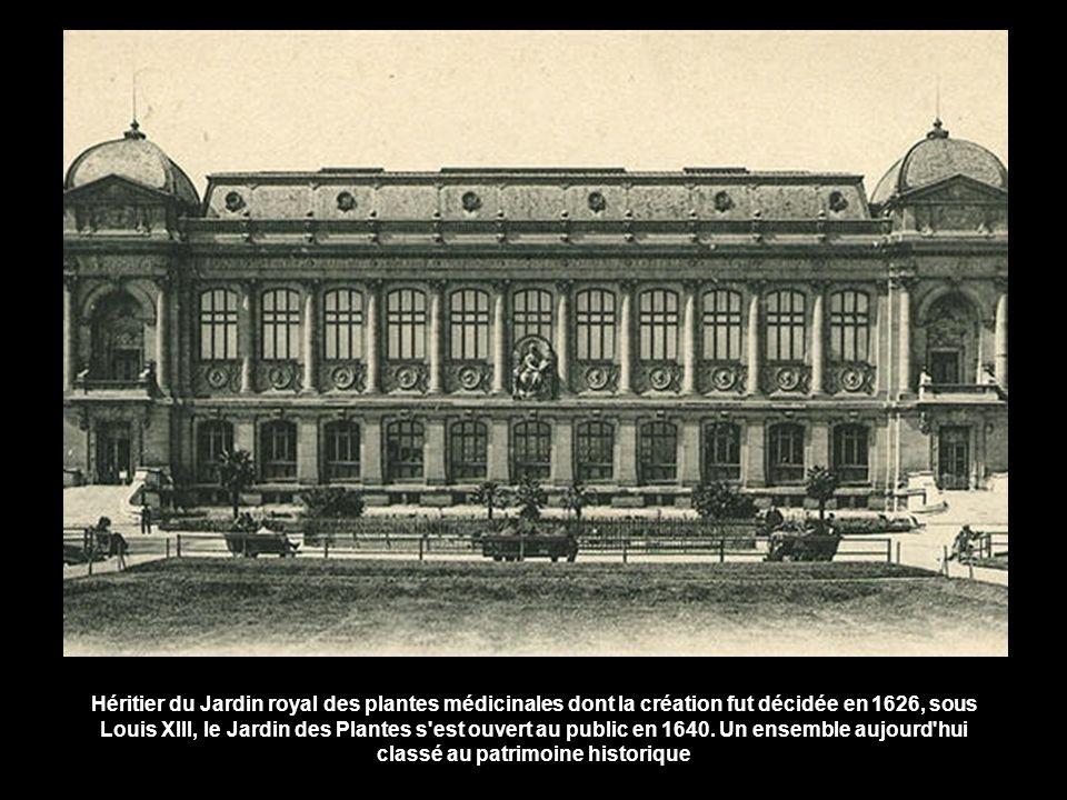 Héritier du Jardin royal des plantes médicinales dont la création fut décidée en 1626, sous Louis XIII, le Jardin des Plantes s est ouvert au public en 1640.