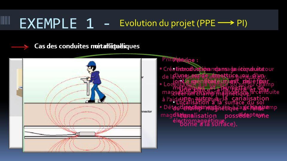 EXEMPLE 1 - Evolution du projet (PPE PI)