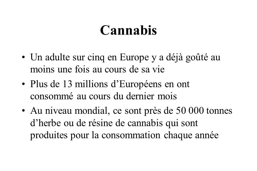 Cannabis Un adulte sur cinq en Europe y a déjà goûté au moins une fois au cours de sa vie.