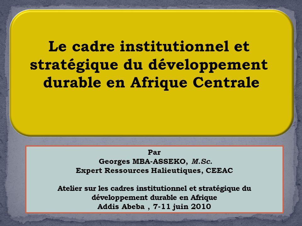 Le cadre institutionnel et stratégique du développement