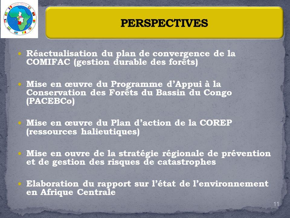 PERSPECTIVES Réactualisation du plan de convergence de la COMIFAC (gestion durable des forêts)