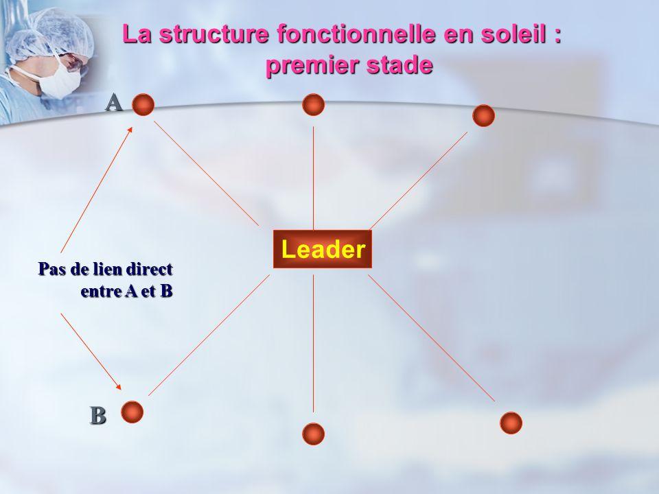 La structure fonctionnelle en soleil :
