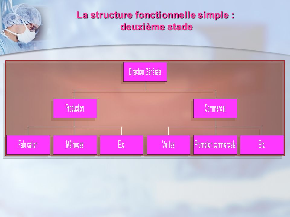 La structure fonctionnelle simple :