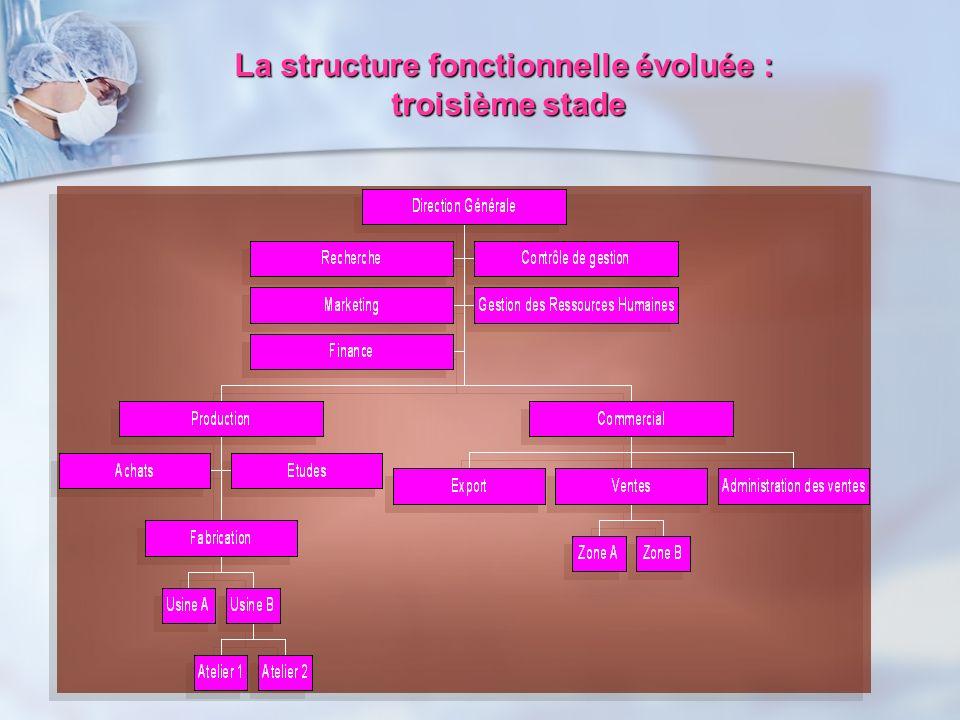 La structure fonctionnelle évoluée :