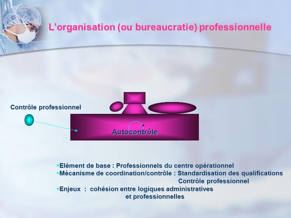L'organisation (ou bureaucratie) professionnelle