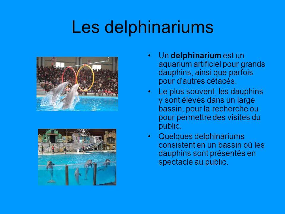 Les delphinariums Un delphinarium est un aquarium artificiel pour grands dauphins, ainsi que parfois pour d autres cétacés.