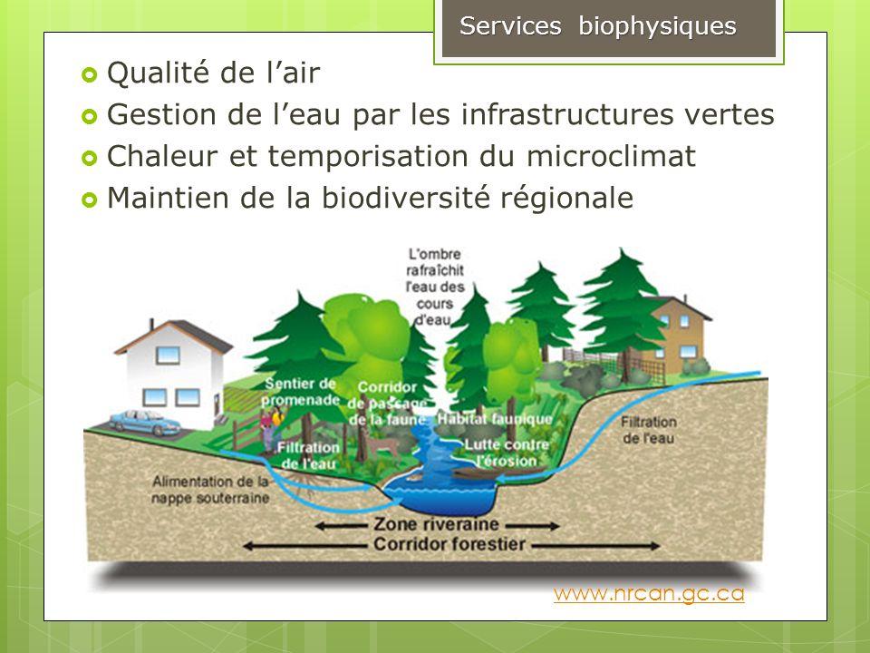 Gestion de l'eau par les infrastructures vertes