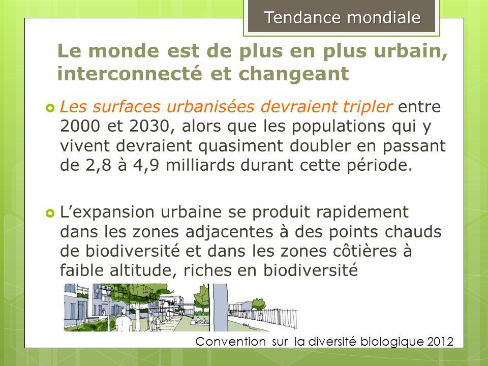 Le monde est de plus en plus urbain, interconnecté et changeant