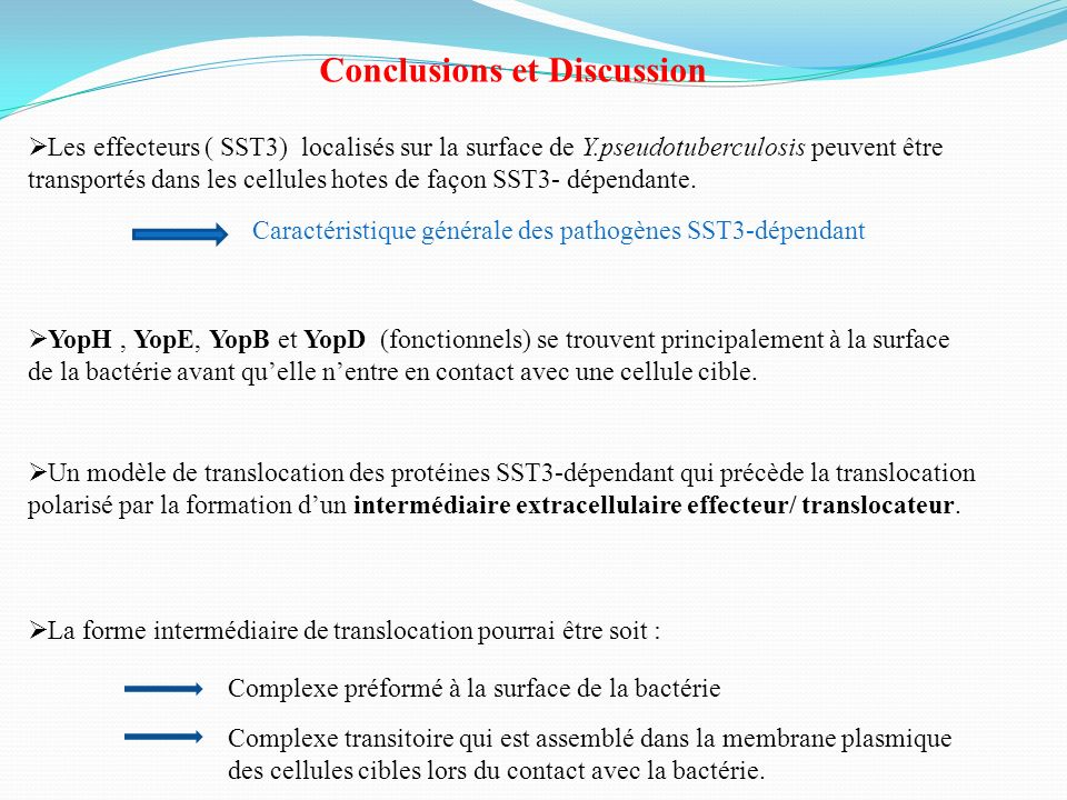 Conclusions et Discussion