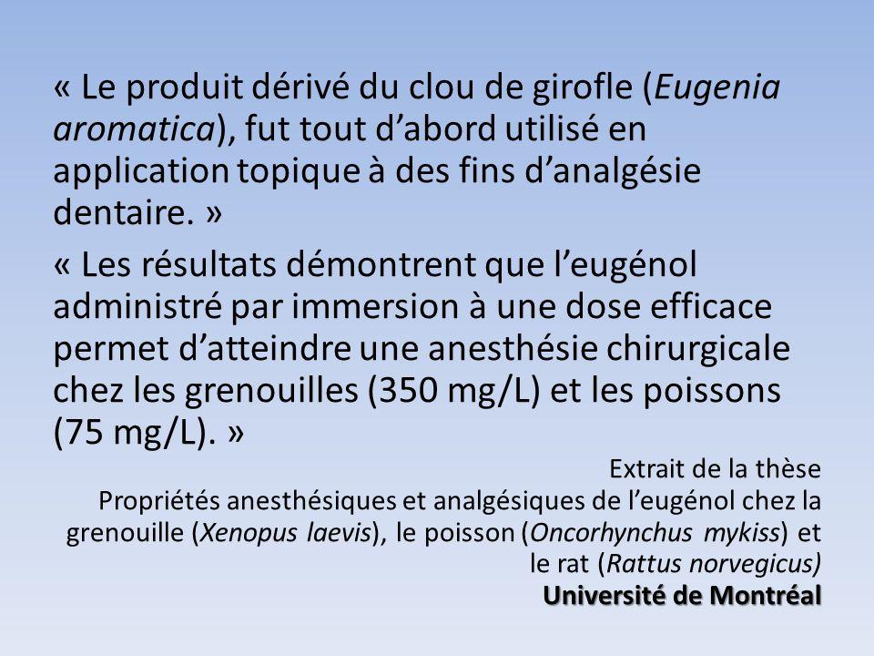« Le produit dérivé du clou de girofle (Eugenia aromatica), fut tout d'abord utilisé en application topique à des fins d'analgésie dentaire. »