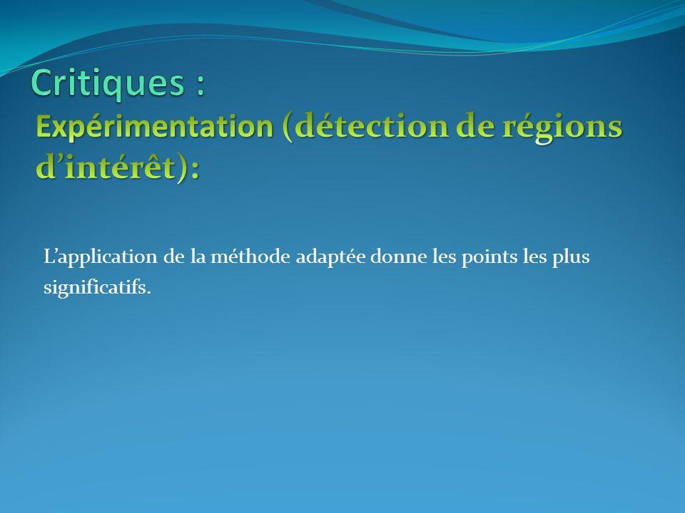 Critiques : Expérimentation (détection de régions d'intérêt):