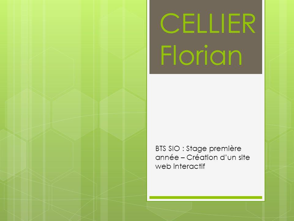 BTS SIO : Stage première année – Création d'un site web interactif
