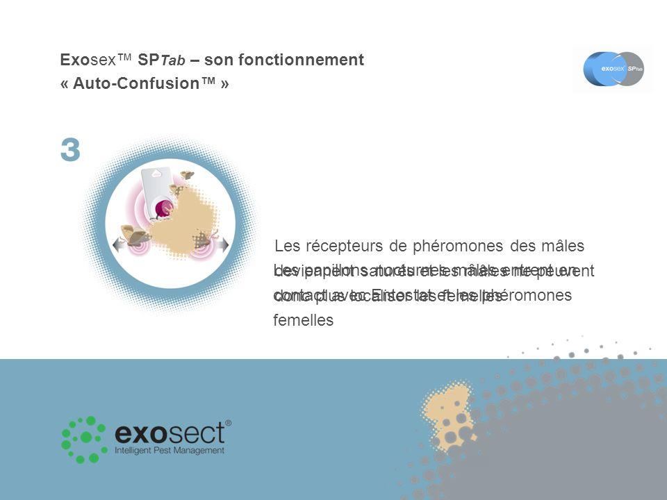 Exosex™ SPTab – son fonctionnement « Auto-Confusion™ »