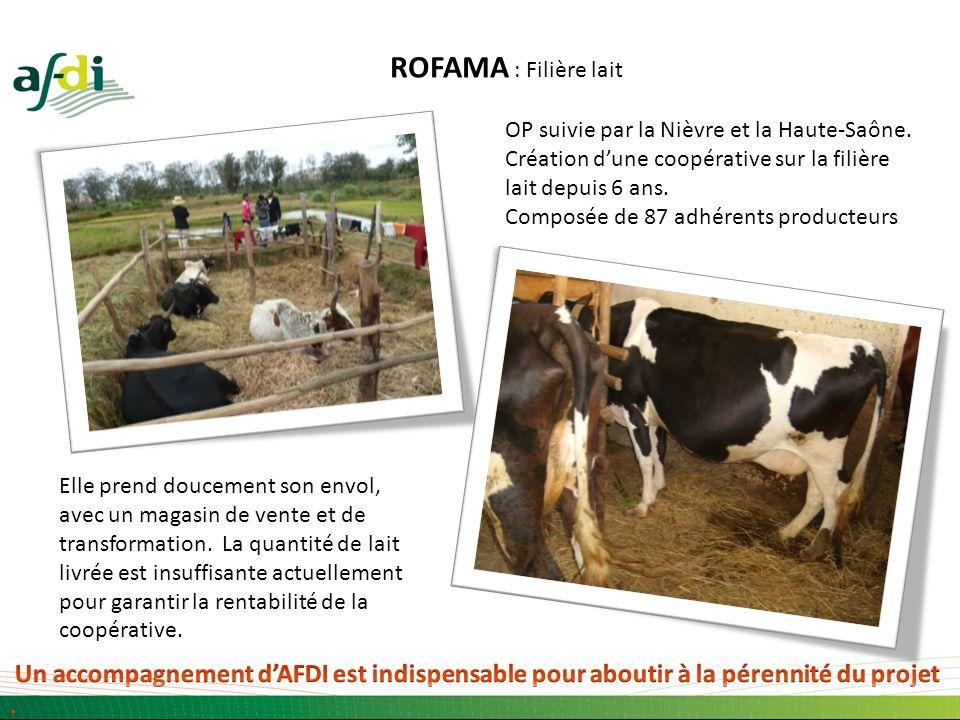 ROFAMA : Filière lait OP suivie par la Nièvre et la Haute-Saône.