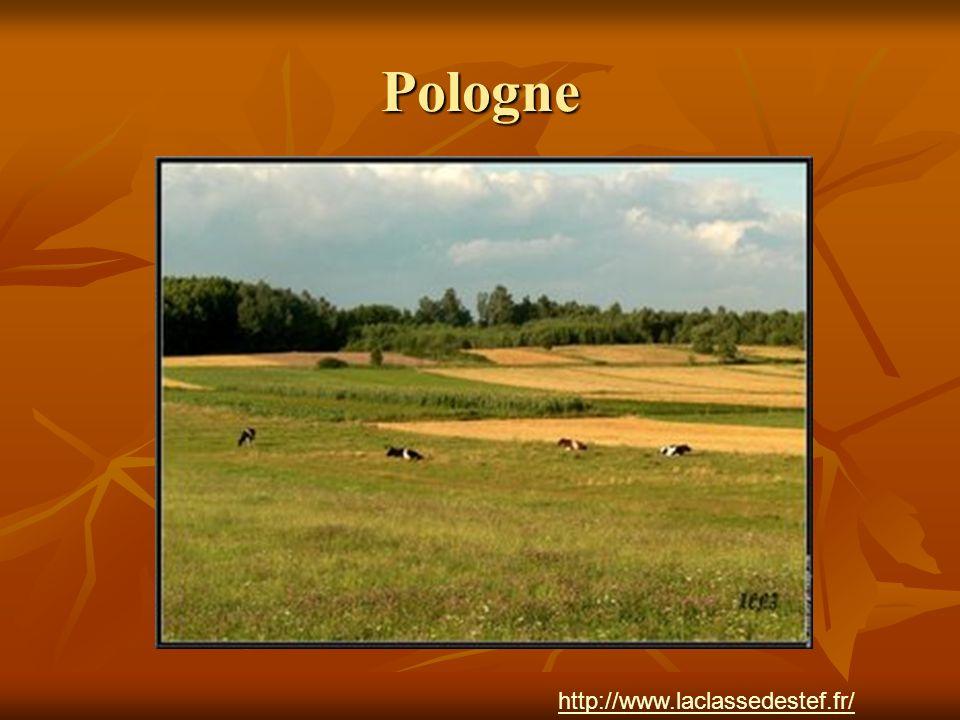 Pologne http://www.laclassedestef.fr/ Auteur : Nathalie