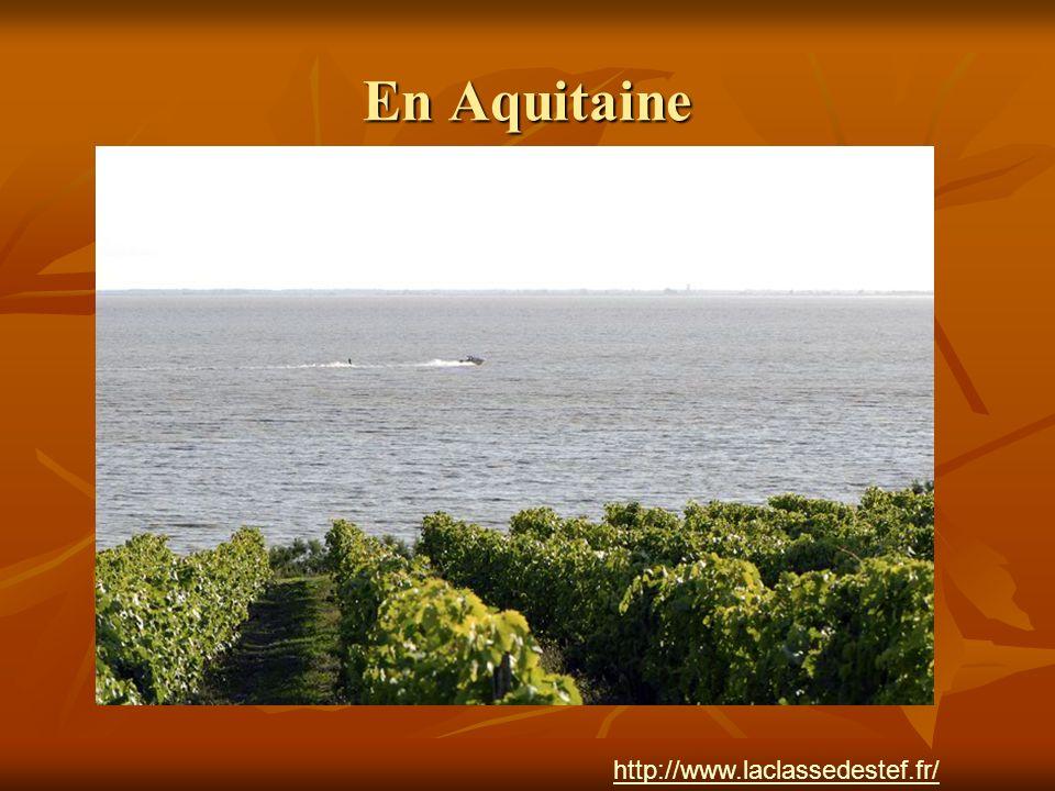 En Aquitaine http://www.laclassedestef.fr/ Auteur : Nathalie