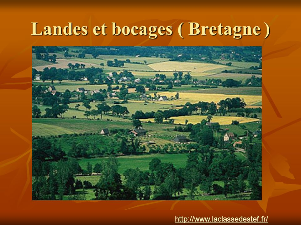 Landes et bocages ( Bretagne )