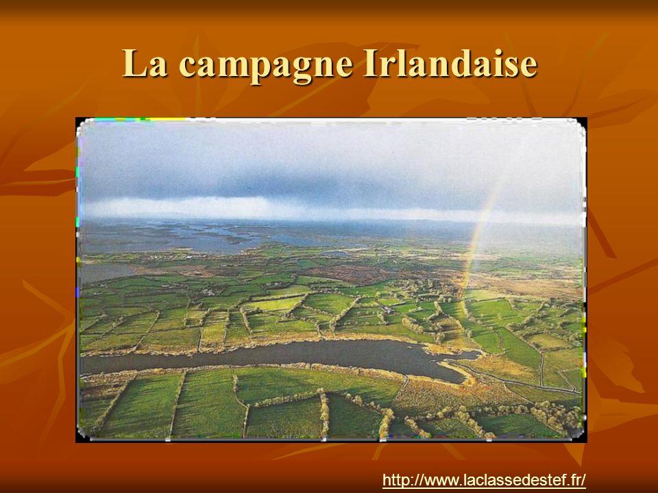 La campagne Irlandaise