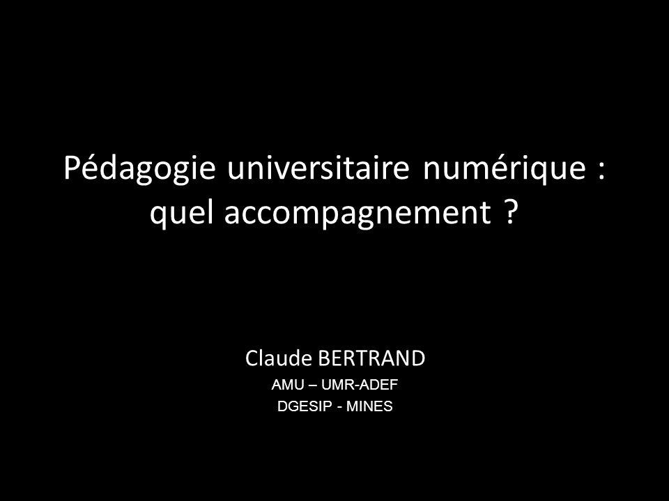 Pédagogie universitaire numérique : quel accompagnement