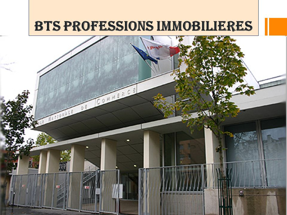 BTS PROFESSIONS IMMOBILIERES