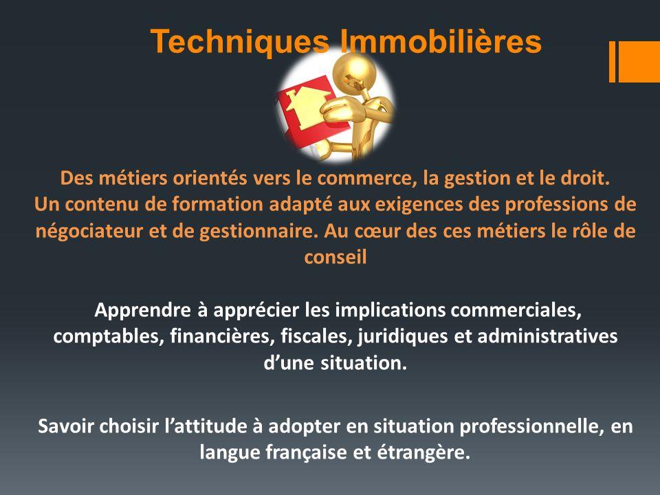 Techniques Immobilières