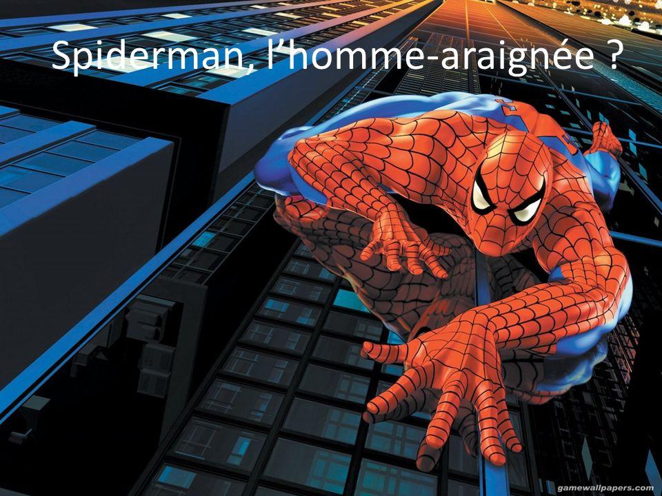 Spiderman, l'homme-araignée