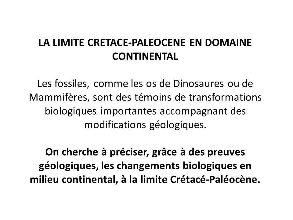 LA LIMITE CRETACE-PALEOCENE EN DOMAINE CONTINENTAL Les fossiles, comme les os de Dinosaures ou de Mammifères, sont des témoins de transformations biologiques importantes accompagnant des modifications géologiques.