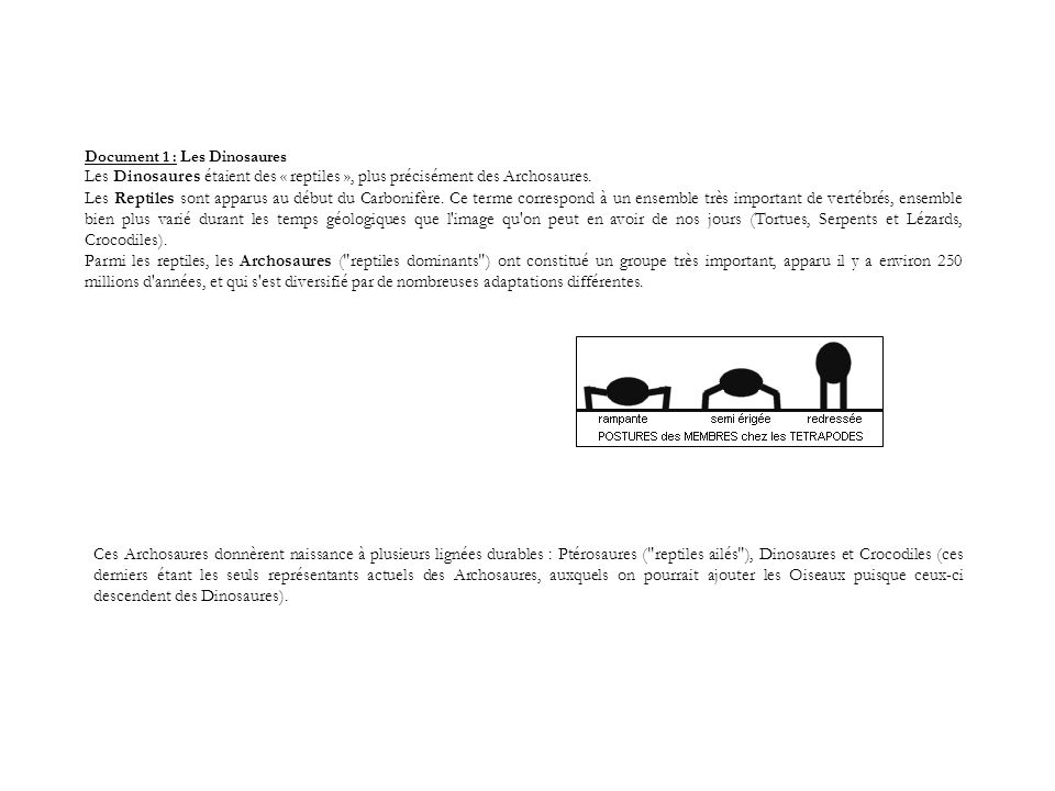 Document 1 : Les Dinosaures