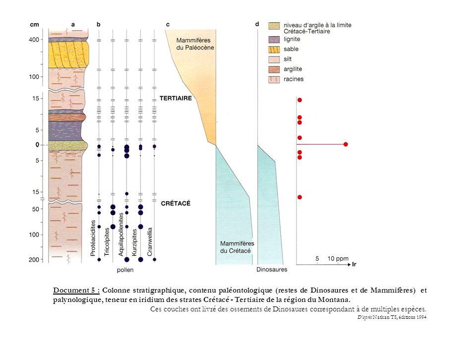 Document 5 : Colonne stratigraphique, contenu paléontologique (restes de Dinosaures et de Mammifères) et palynologique, teneur en iridium des strates Crétacé - Tertiaire de la région du Montana.