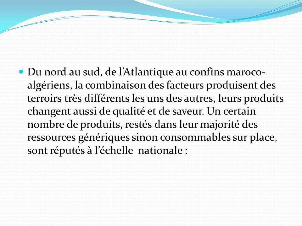 Du nord au sud, de l'Atlantique au confins maroco-algériens, la combinaison des facteurs produisent des terroirs très différents les uns des autres, leurs produits changent aussi de qualité et de saveur.