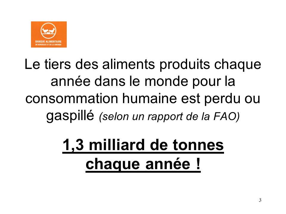 1,3 milliard de tonnes chaque année !
