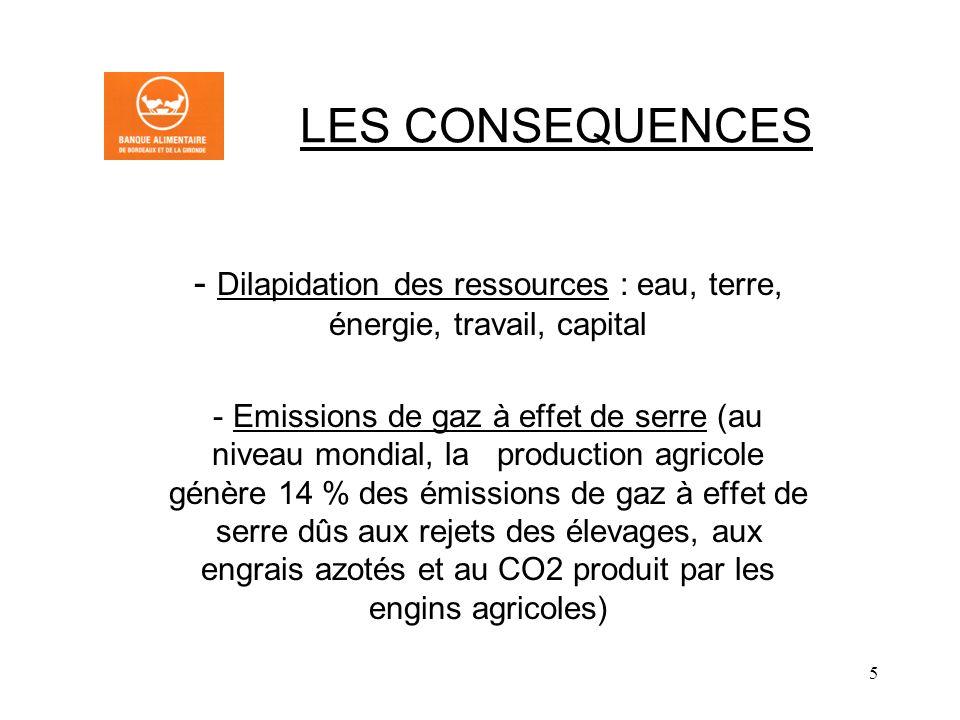 Dilapidation des ressources : eau, terre, énergie, travail, capital
