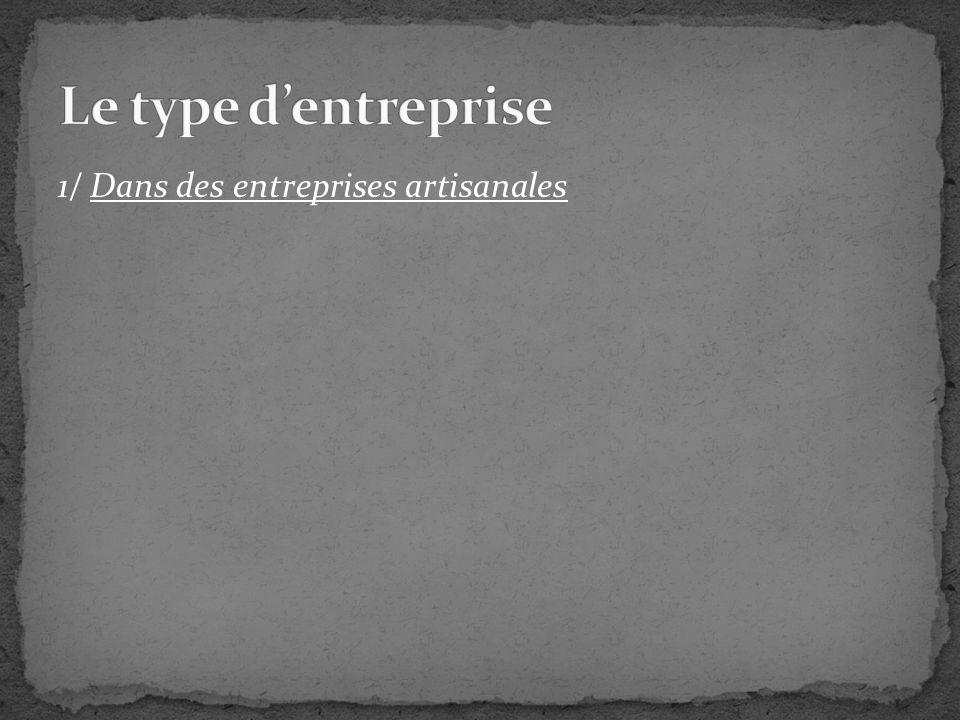 Le type d'entreprise 1/ Dans des entreprises artisanales
