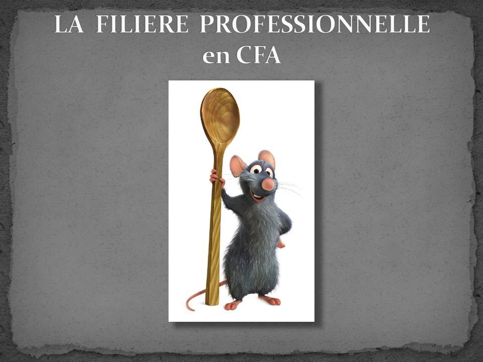 LA FILIERE PROFESSIONNELLE en CFA