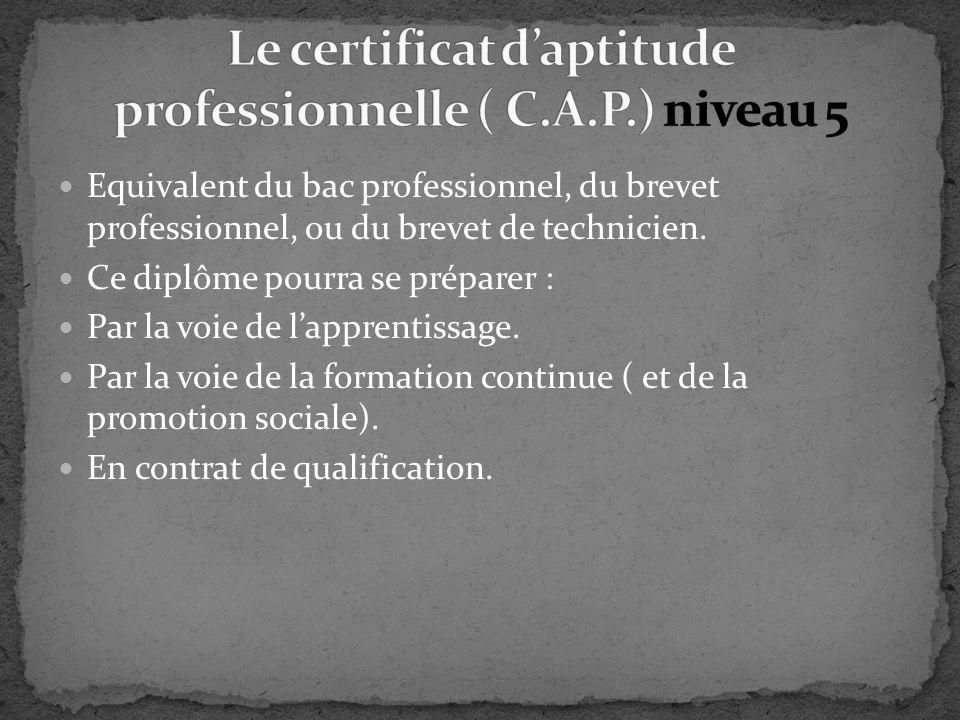 Le certificat d'aptitude professionnelle ( C.A.P.) niveau 5