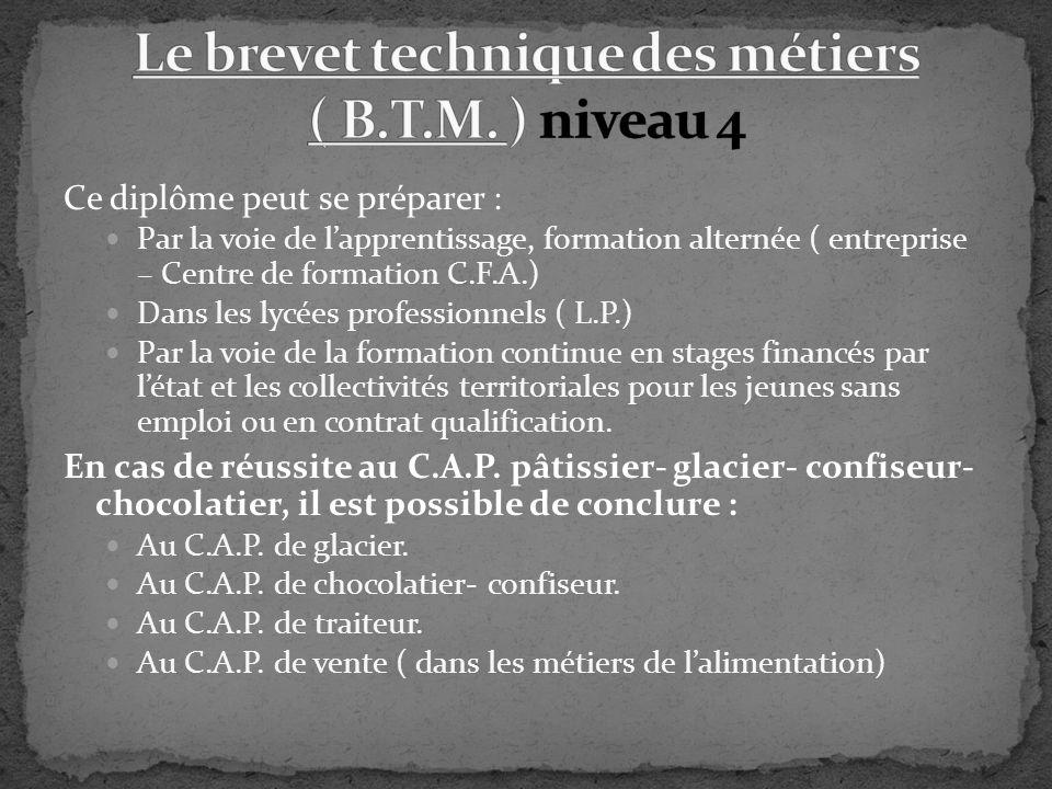 Le brevet technique des métiers ( B.T.M. ) niveau 4