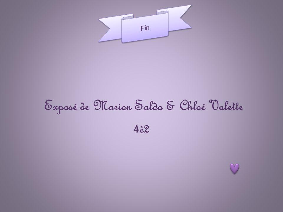 Exposé de Marion Saldo & Chloé Valette