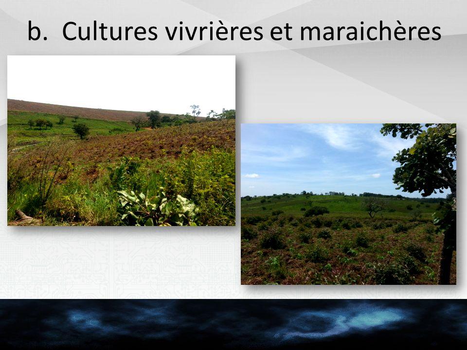b. Cultures vivrières et maraichères