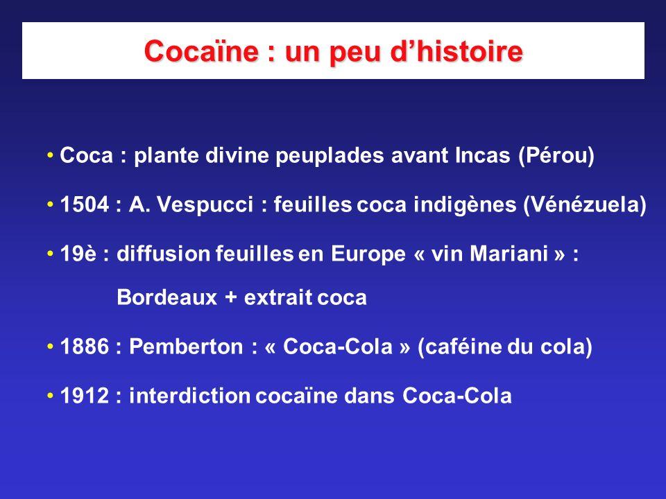 Cocaïne : un peu d'histoire